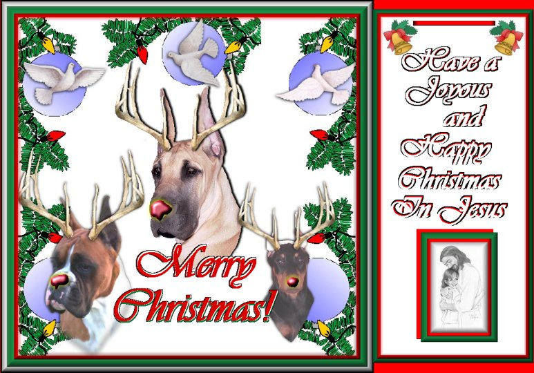 Merry Christmas antler dog card2.jpg (133346 bytes)